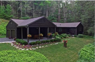 Roxbury Single Family Home For Sale: 389 South Street