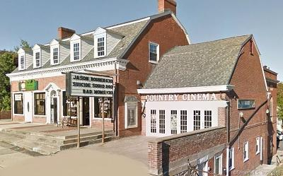 Watertown Commercial For Sale: 523 Main Street