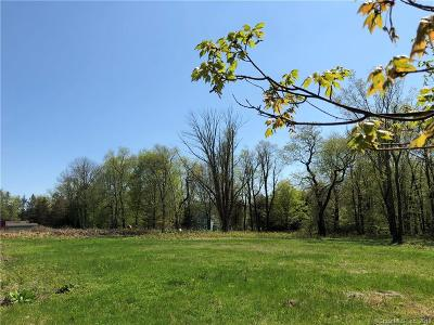 Newtown Residential Lots & Land For Sale: 3 Putnam Drive