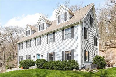 Ridgefield Single Family Home For Sale: 105 Pine Mountain Road