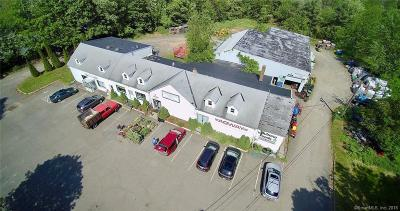 Meriden Commercial For Sale: 744 Murdock Avenue