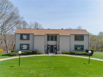 East Lyme Condo/Townhouse For Sale: 91 Riverview Road #4B