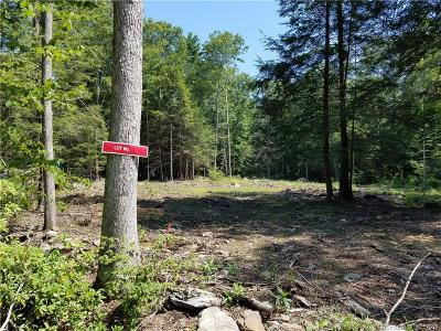 Eastford Residential Lots & Land For Sale: 17 Lake Woods Lane