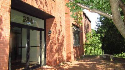 Middletown Rental For Rent: 234 South Main Street #302