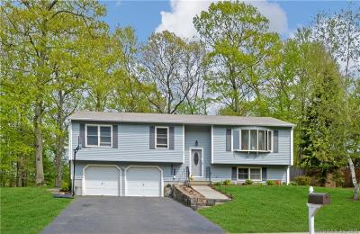East Haven Single Family Home For Sale: 27 Wood Terrace