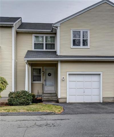 Rocky Hill Condo/Townhouse For Sale: 102 Blair Road #102