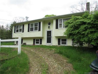 Windham County Single Family Home For Sale: 22 Buntz Road