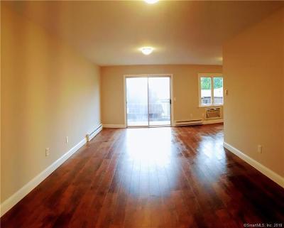 Danbury Condo/Townhouse For Sale: 136 Deer Hill Avenue #A9