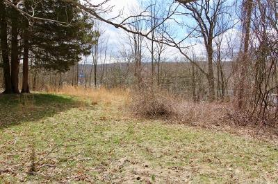 Norwich Residential Lots & Land For Sale: 129 Old Salem Road