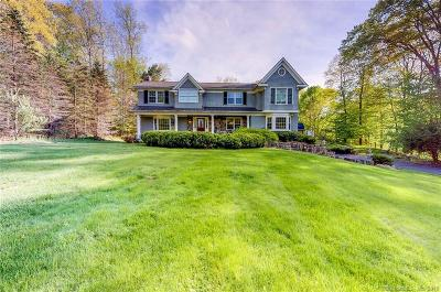 RIDGEFIELD Single Family Home For Sale: 19 Conant Road