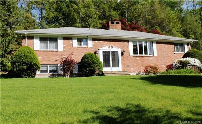 Fairfield County Single Family Home For Sale: 37 Rapids Road