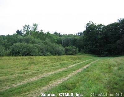 Putnam Residential Lots & Land For Sale: 241 Killingly Avenue