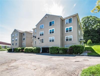 New Britain Condo/Townhouse For Sale: 1241 East Street #A3