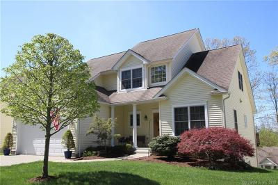 Danbury Single Family Home For Sale: 6 Margerie View Drive #6