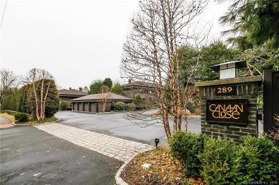 New Canaan Condo/Townhouse For Sale: 289 New Norwalk Road #36
