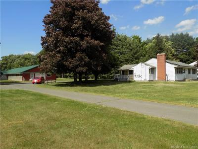 Enfield Single Family Home For Sale: 113 Brainard Road
