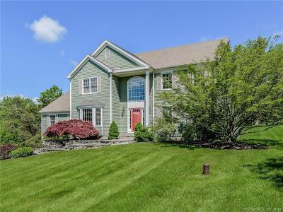 Newtown Single Family Home For Sale: 3 Pheasant Ridge Road