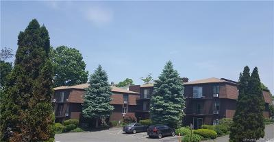 Danbury Condo/Townhouse For Sale: 136 Deer Hill Avenue #A9
