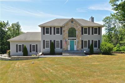 New Fairfield Single Family Home For Sale: 2 Squantz View Drive