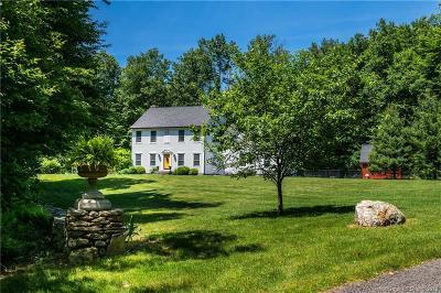 Roxbury Single Family Home For Sale: 306 Southbury Road