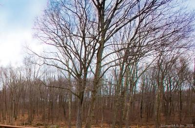 Watertown Residential Lots & Land For Sale: 96 Jericho Road #Lot 3