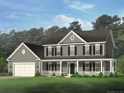 New Milford Single Family Home For Sale: 278-280 Pumpkin Hill Road