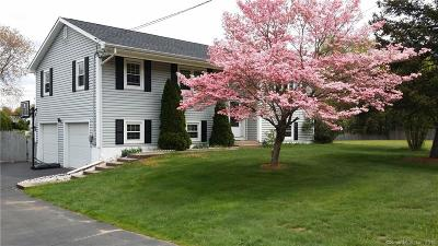 Southington Single Family Home For Sale: 161 Mount Vernon Road