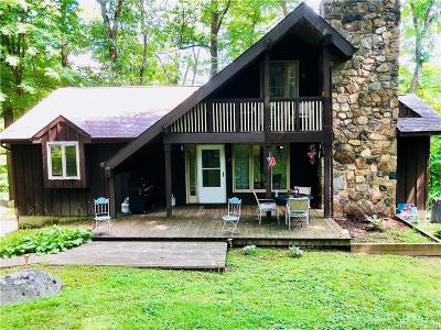 Danbury Single Family Home For Sale: 206 Brushy Hill Road