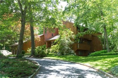 Stamford Single Family Home For Sale: 52 Mill Valley Lane