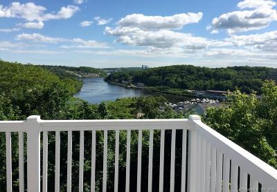 Norwich Condo/Townhouse For Sale: 5 Harbor View Lane #5