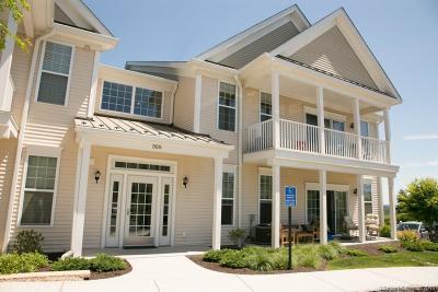 Danbury Condo/Townhouse For Sale: 528 Center Meadow Lane Lane