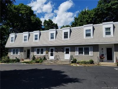 New Canaan Condo/Townhouse For Sale: 164 Summer Street #B
