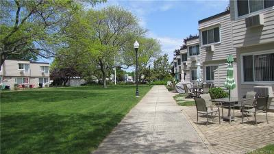 West Haven Condo/Townhouse For Sale: 114 West Walk #114