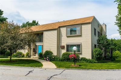 East Lyme Condo/Townhouse For Sale: 91 Riverview Road #9A