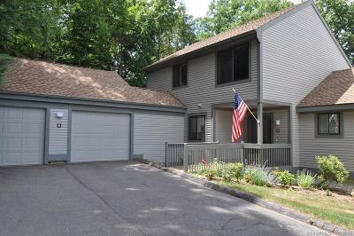 Avon Condo/Townhouse For Sale: 6 Fieldstone Lane #6