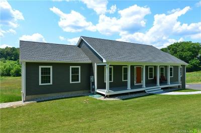 Windham County Single Family Home For Sale: 330 Paine District Road