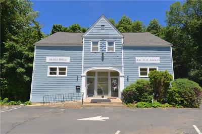Newtown Single Family Home For Sale: 5 Riverside Road
