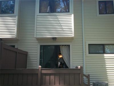 Bloomfield Condo/Townhouse For Sale: 7 Woodland Avenue #E