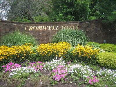 Cromwell Condo/Townhouse For Sale: 48 Chestnut Court #48