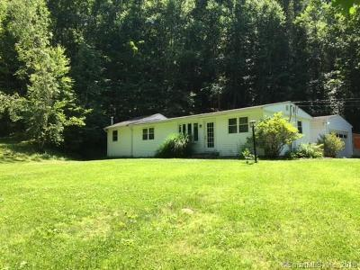Roxbury Single Family Home For Sale: 9 Lower River Road