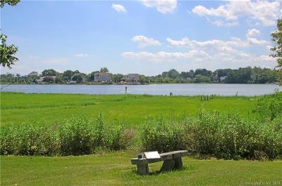 Bridgeport Single Family Home For Sale: 25 Newton Street