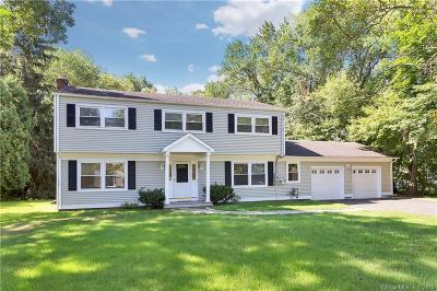 Stamford Single Family Home For Sale: 245 Skyview Drive