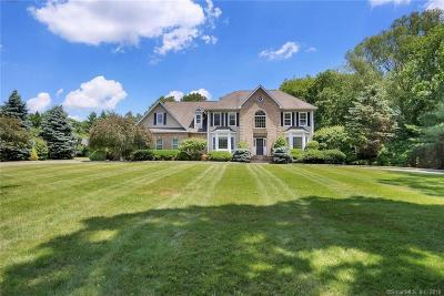 Stamford Single Family Home For Sale: 48 North Meadows Lane