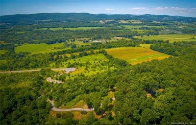 Amenia Residential Lots & Land For Sale: 108 Westerly Ridge Drive