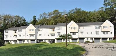 Windham County Condo/Townhouse For Sale: 10 Knollwoods Lane #10