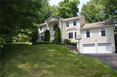 Stamford Single Family Home For Sale: 45 Marva Lane