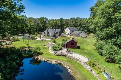 Putnam Single Family Home For Sale: 567 River Road