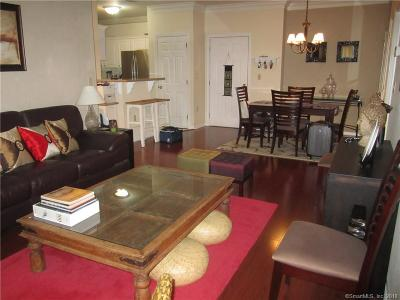 Norwalk Condo/Townhouse For Sale: 105 Richards Avenue #2305