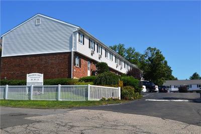 Fairfield County Condo/Townhouse For Sale: 40 Cerretta Street #22