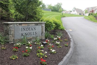 Litchfield Single Family Home For Sale: 11 Seminole Circle